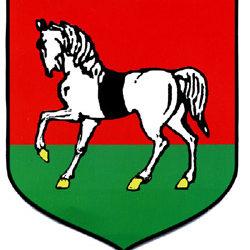 Jubileusz 125-lecia nadania praw miejskich Suchej Beskidzkiej